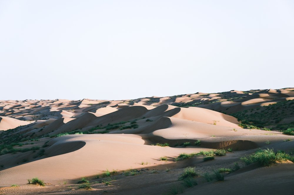 Oman. And Why You Should Plan Your Next Trip Here
